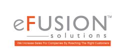 EFUSION SOLUTIONS PTE. LTD.